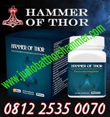 jual obat hammer thor s sidoarjo asli murah 081225350070