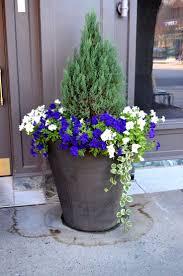 nurseries in atlanta homewood nursery 376 best garden ideas u0026 plans images on pinterest garden ideas