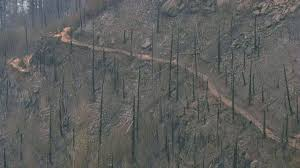 Wild Fire Columbia Gorge by Columbia Gorge Trails Might Be Closed Until Spring Kgw Com