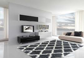 Windows Family Room Ideas Living Room Gray Shag Rug With White Wall Design And Glass