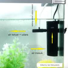 membuat filter aquarium kecil macam macam filter akuarium dan cara pemakaiannya akuarium mas koki