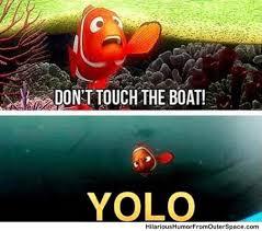 Finding Nemo Meme - finding nemo yolo meme memes gifs and funny stuff good for
