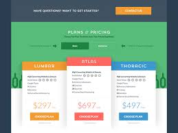 Price Plan Design | 21 best pricing plan designs images on pinterest pricing table