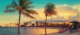 winter is in full force miami vacation rental market is one of