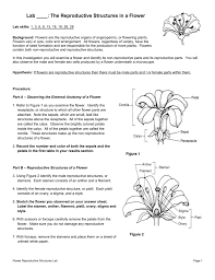 lab the reproductive structures in a flower