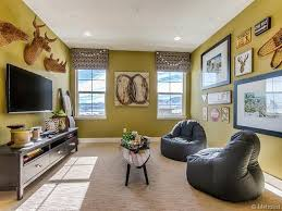 contemporary living room with carpet by rebecca caiani zillow