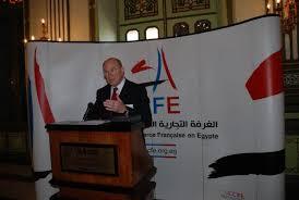 chambre de commerce franco arabe 2010 cci egypte