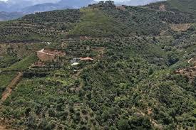 botanical park of crete