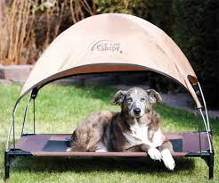 top 10 outdoor dog beds outdoor dog world