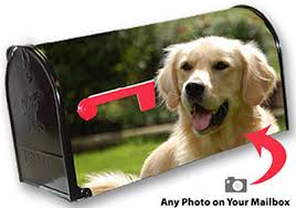 personalized photo mailbox covers by mailboxworks