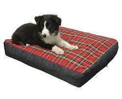 materasso per cani letto ortopedico per cani anziani per un sonno ristoratore
