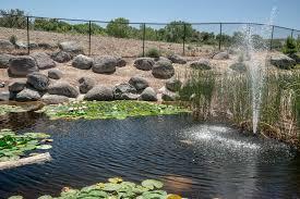 Botanical Gardens Grand Junction Grand Junction Garden A Work In Progress U S Japanese Gardens
