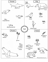zchhs english hs grade 7 science worksheet