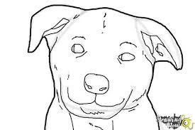 how to draw a dog face drawingnow