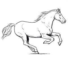 horse amazing pace horses coloring netart