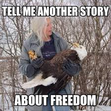 Murica Memes - story murica know your meme