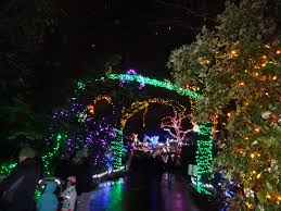 Zoo Lights Woodland Park December 2013 Eastside Sneakypaws Style