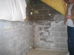 backyard damp basement damp basement flooring options u201a damp
