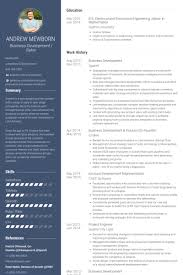 Salesforce Developer Resume Samples by Director Of Business Development Resume Samples Visualcv Resume