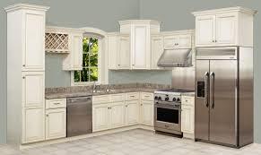 Different Kitchen Designs by Charming Rta Kitchen Cabinets Be Different Kitchen Interior Home