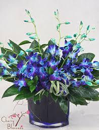 blue orchids blue orchid bouquet cherry blossoms florist westminster co