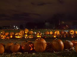 14 free things to do for halloween in toronto narcity