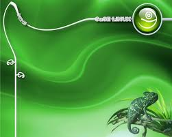 gold wallpaper sles hq definition opensuse by azrael longthorn