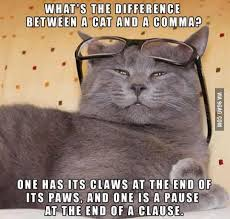 Punctuation Meme - happy national punctuation day soky book fest reads