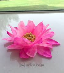 lotus flowers and elephants crafts for kids south asian