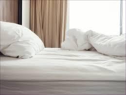 bedroom amazing royal velvet damask royal cotton sheets royal
