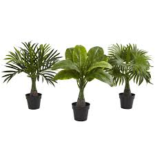 the 10 best artificial plants to use by your swimming pool