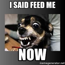 Feed Me Seymour Meme - me meme