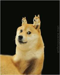 Such Doge Meme - how to pronounce doge meme best photographs doge such funny best