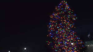 blurred christmas tree lights computer generated seamless loop