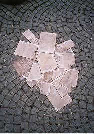 white rose wikipedia