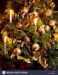 still life of christmas tree with lighted candles and gold ribbon