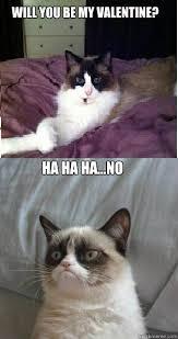 grumpy cat valentines will you be my ha ha ha no grumpy cat quickmeme