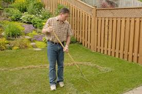 How To Cut Weeds In Backyard Removing Thatch And Weeds Yard Care