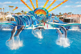 Seaworld Orlando Park Map by Seaworld Orlando Single Day Ticket Undercover Tourist