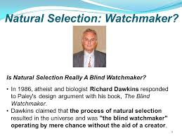 Richard Dawkins Blind Watchmaker Is There A God Is Anybody Up There Ppt Download