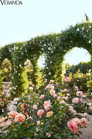 garden family oprah u0027s santa barbara rose garden