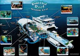 great barrier reef adventures airlie beach day trips whitsunday