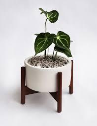 case study desk top planter shop ceramics pottery and home