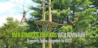 Backyard Zip Line Without Trees by Canopy Tour Home Page