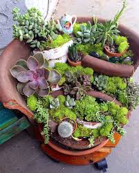 broken pots turned into brilliant diy fairy gardens