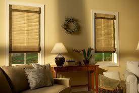 Home Decor Blinds by Decorating Interesting Interior Home Decor With Matchstick Blinds