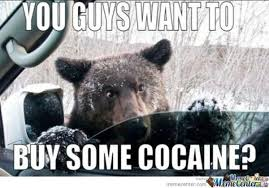 Coke Bear Meme - cocaine bear know your meme