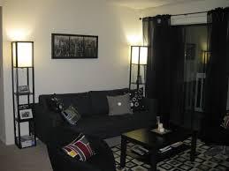 Cute Apartment Bedroom Decorating Ideas Design Ideas On Living - College living room decorating ideas