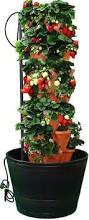 hydroponic garden tower foody 8 vertical hydroponic garden tower