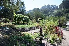 World Botanical Gardens Crops Of The World Uc Botanical Garden